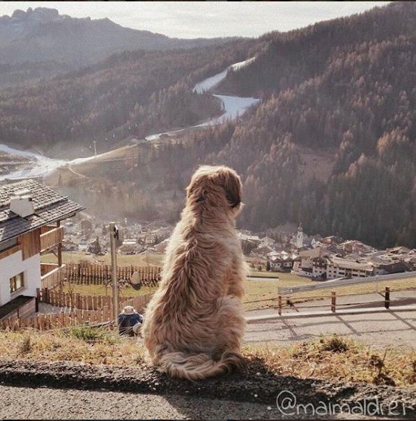 35_reiselust Südtirol Bodi